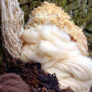 Wensleydale Longwool Fleeces and Tops
