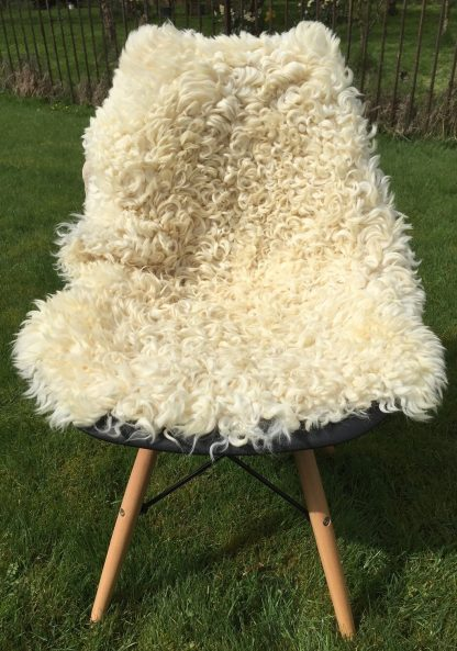 Devon and Cornwall Longwool rare breed sheepskin full shot large
