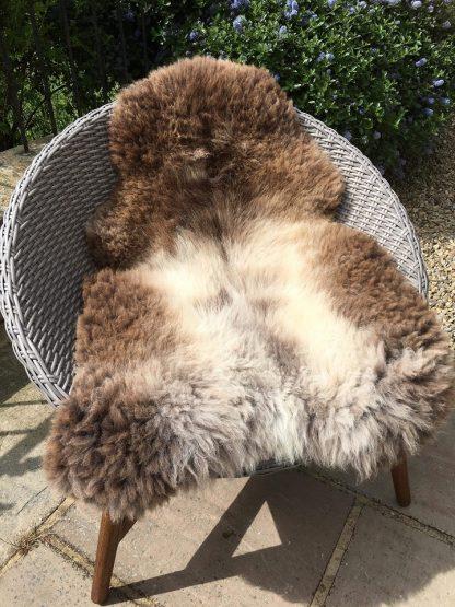 Large Sheepskin Rug - Rare Breed mottled