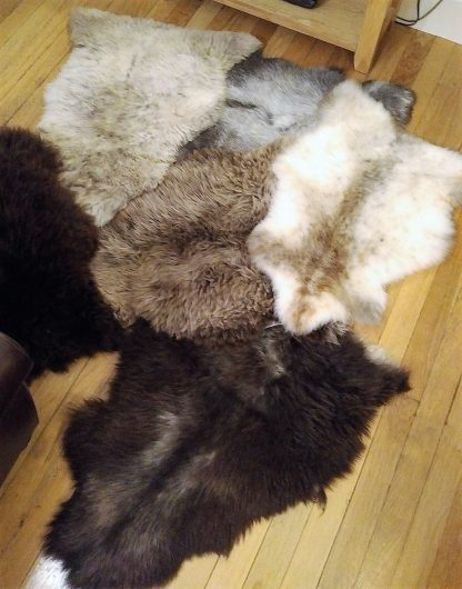 Rare Breed Sheepskin Rugs