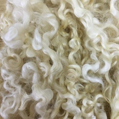 Wensleydale washed undyed Fleece