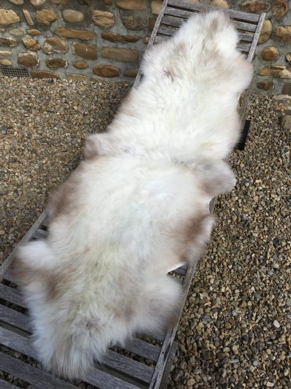 Double Sheepskin Rug - Rare Breed natural