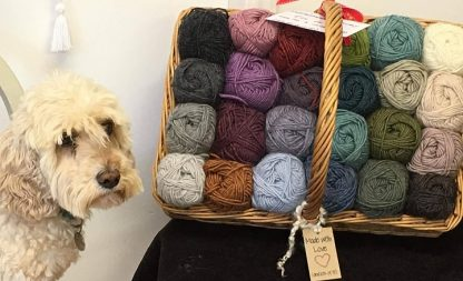 Roving Merino-Mohair wool colours in basket alongside dog